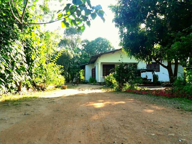 Sigiri Lakshan Home Stay - Dambulla - House