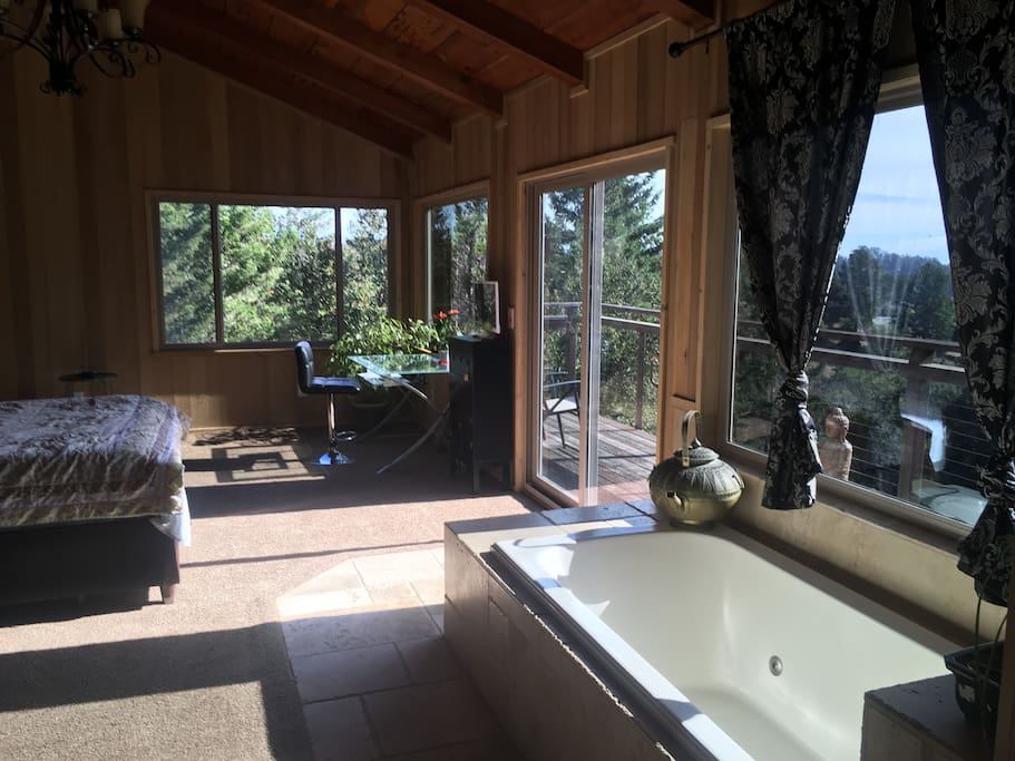 Jacuzzi in bedroom, wall to wall tile bathroom with dual headed shower.