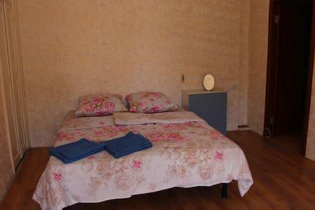 Apartment in the city centre of Irkutsk - Apartment