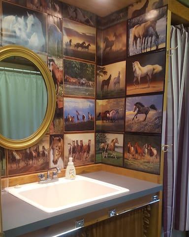 Fun horsey bathroom with  big shower.  No tub.