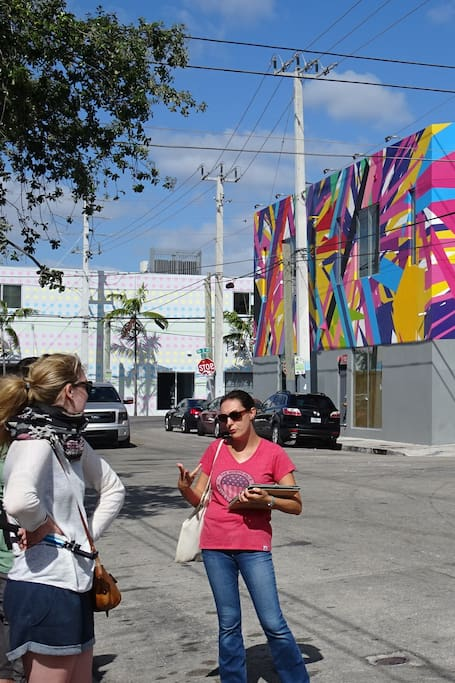 Guided tour of Wynwood in French