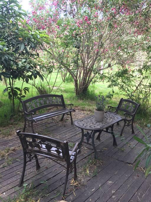 Piccolo angolo di tranquillità nel nostro grandissimo giardino.
