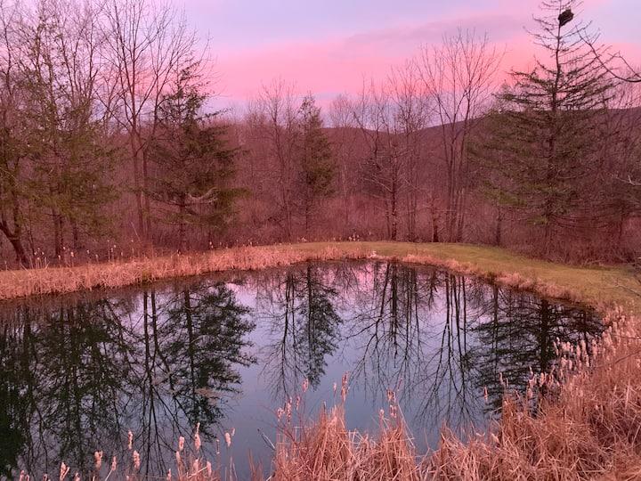 The Pond Getaway