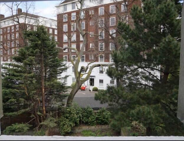 Pretty Studio in Kensington. - London - Guest suite