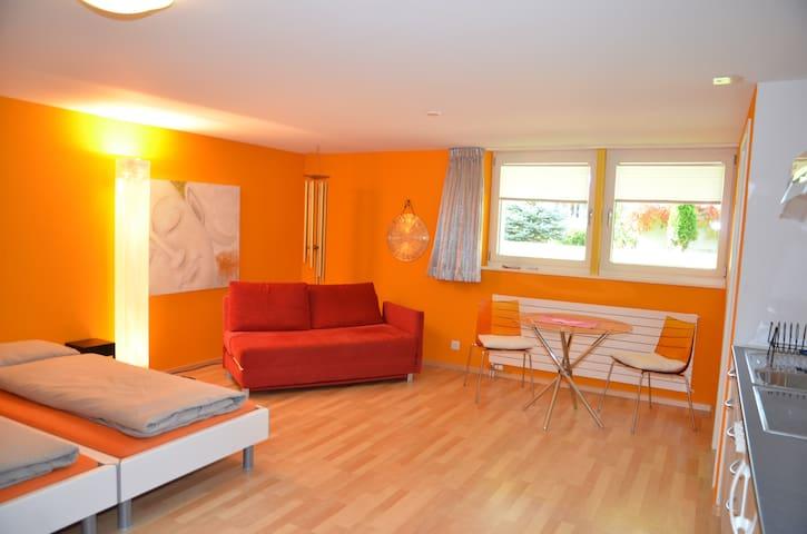 Wunderschönes Studio mit eigenem Eingang - Dornach - Daire