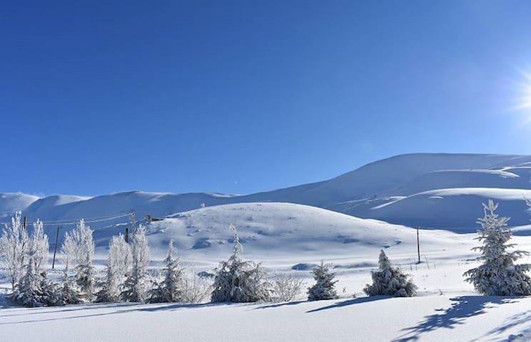 Avalanche chalets - cedars lebaonon