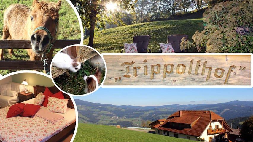 TRIPPOLTHOF -Top Ferienwohnungen mit Panoramablick - Prebl - Leilighet