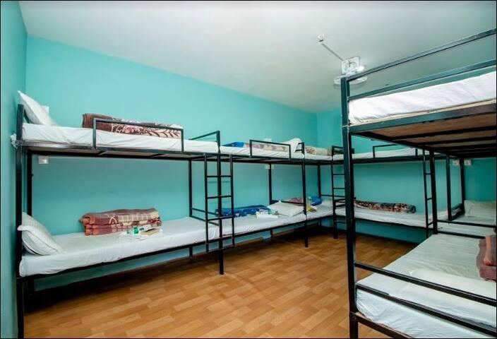 Traveler Bed