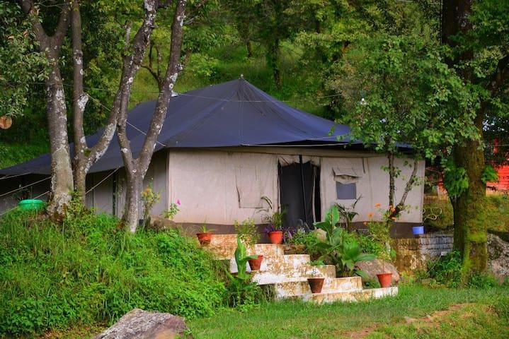 Dharamshala Green Getaway - Dharamshala - Палатка