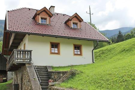 Peaceful Cottage near Ski Area in Gmünd