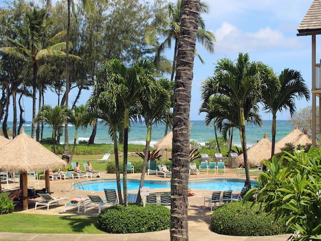 Gorgeous Ocean and Pool Views - 241 - Kapaa - Kondominium
