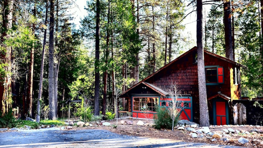 The Owl Pine: Historic Acre on Creek near Aroma - Idyllwild-Pine Cove - Houten huisje