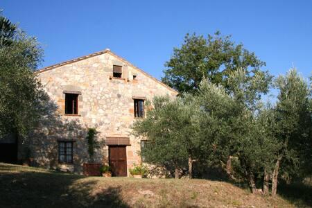 Bartalino, esperienza unica in terra Toscana - Petroio - Ev