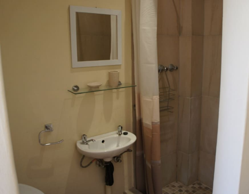 En suite bathroom with shower