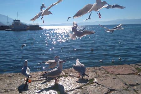 Rosana's Double Room, private bath - Ohrid
