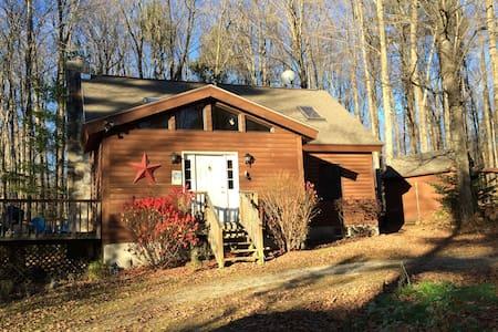 Nemchek's Vermont Log Cabin - Sunderland - Cabin