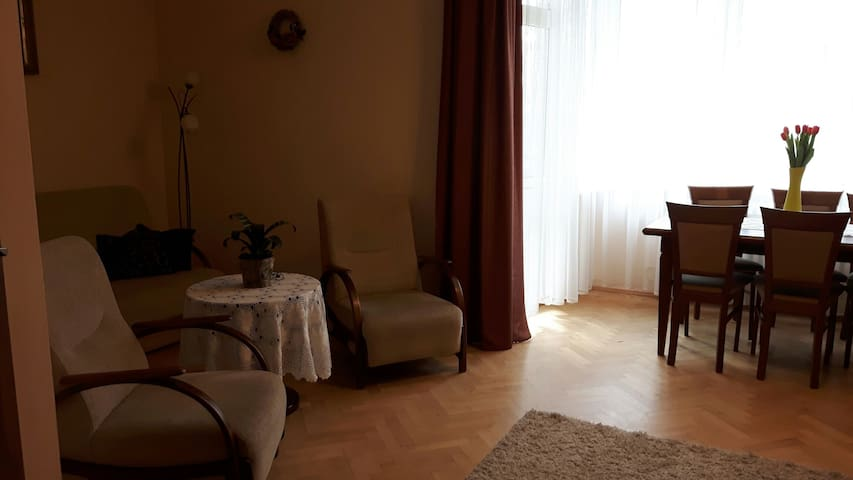 Spacious room with balcony in Oświęcim - Oświęcim - Apartament