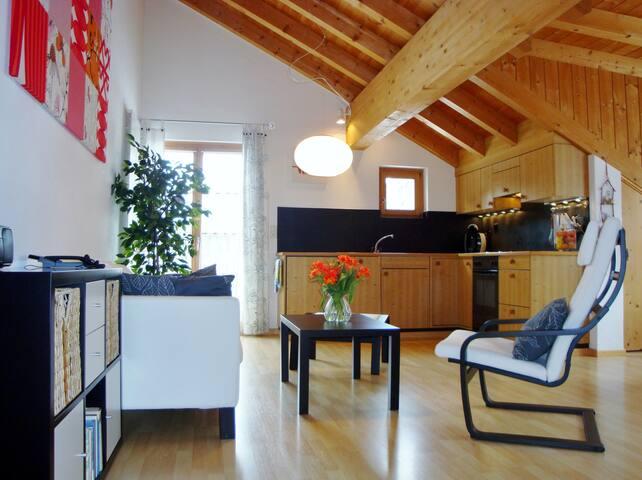Wohn-Schlaf-Zimmer mit Küche