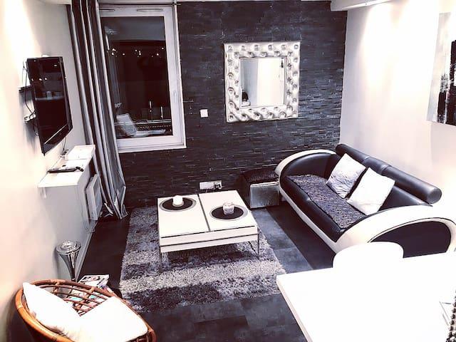 Appartement design T2 RENNES Gare + parking privé