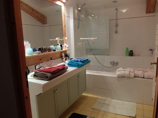 Voici la salle de bain privative
