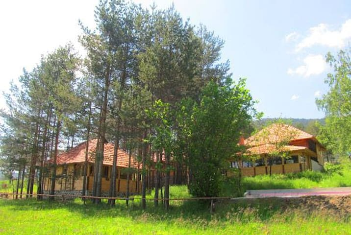 Mountain bungalow in pure nature - Zlatibor - Bungalov