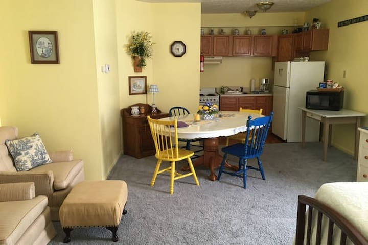 Kickstand Lodging Spring Suite - Spring Valley - Apartament