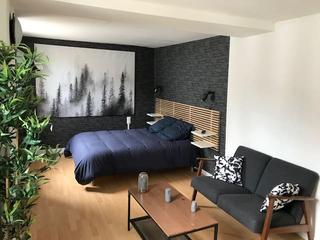 Les appartement de St Etienne : appartement 2