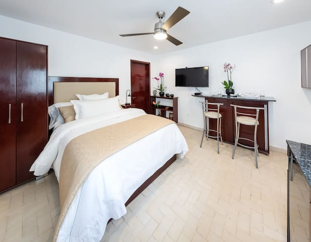 NEW Deluxe Double Suite--Near Downtown