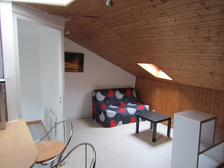 Nice one-bedroom flat in the heart of Haut-Jura