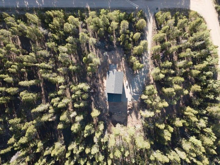 Treetop Retreat! Quiet, Clean, 35 min to Breck!
