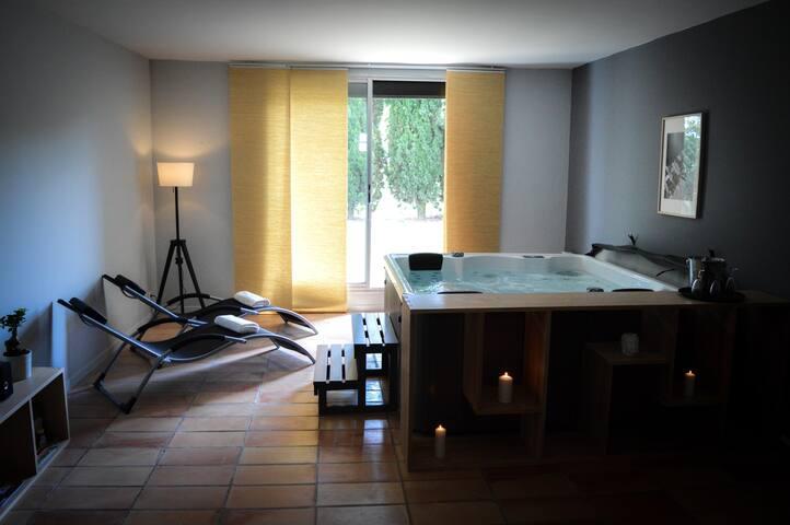 Villa standing au Quartier de L'île de Carcassonne - Carcassonne - Villa