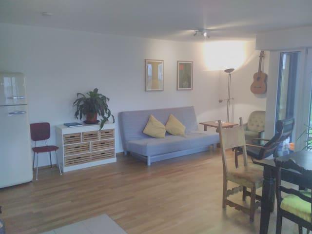 Schöne Wohnung im Herzen des Chiemgaus... - Traunstein - Pis