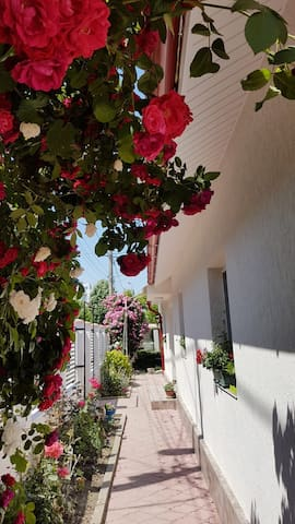Marcela's - Holiday house in Eforie Nord