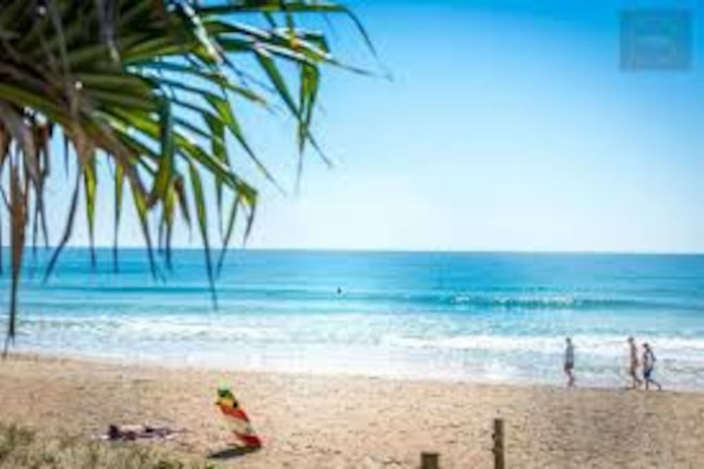 Our beautiful Maroochydore  beach.