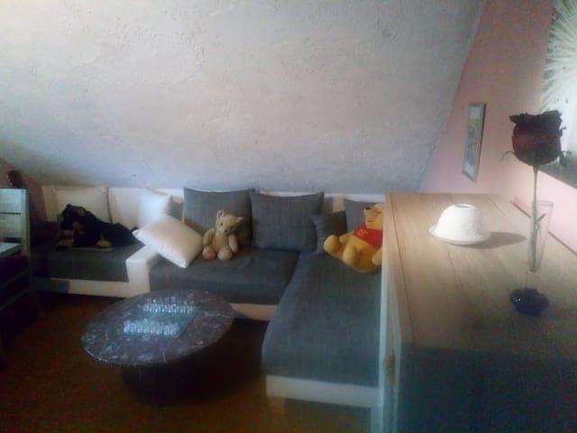 1 Zimmer im Herzen des Westerwaldes!