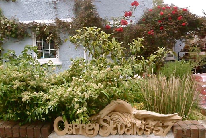 Osprey Studios Cabin - Pen-y-cae