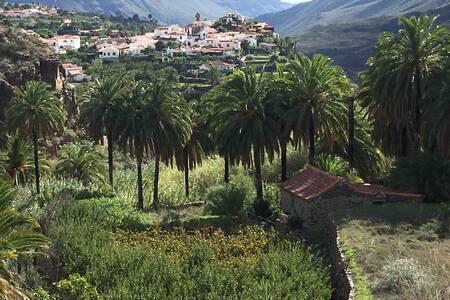 The oasis little house at Ecotara Canary Islands - Fataga - House