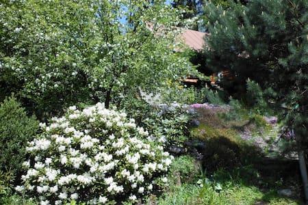 Ubytování U lesa - House