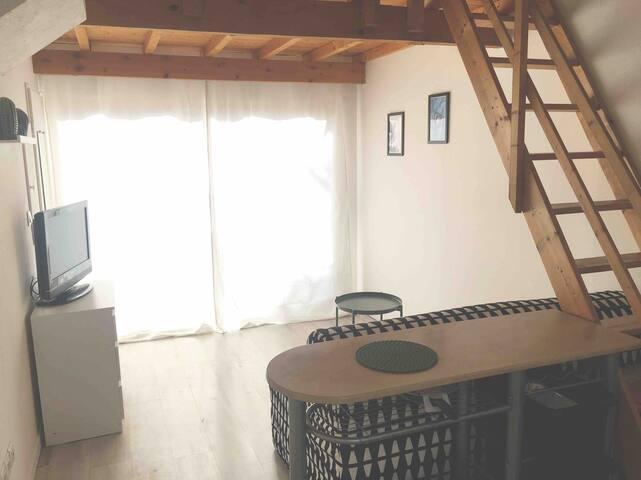 Agréable studio avec mezzanine de 20m2 et jardin
