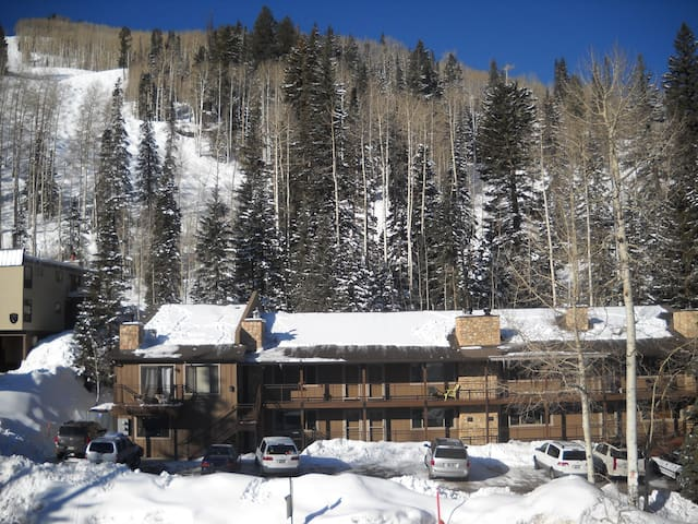 Purgatory Ski-in/ski-out at Brimstone Condo 7