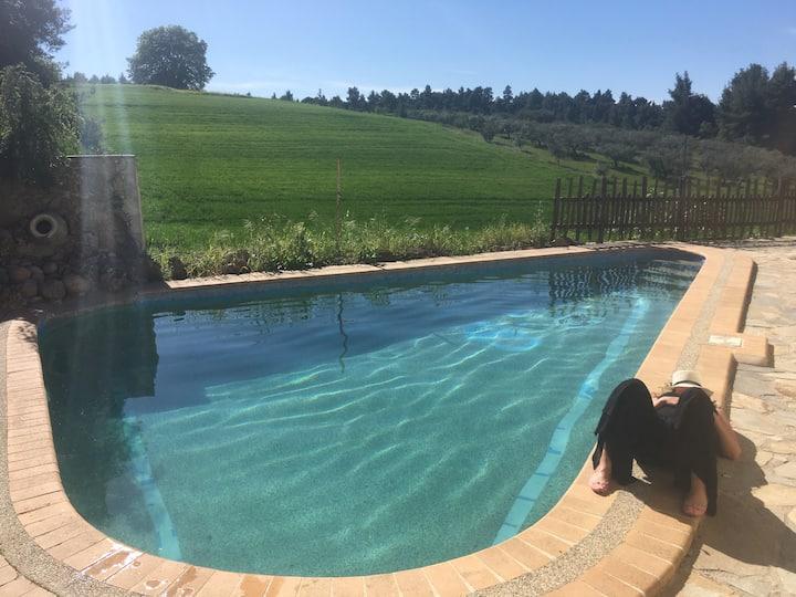 Relax at Xazy's Paradise!