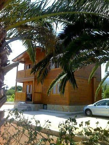 Casa de madera entre naranjos - Llaurí - House