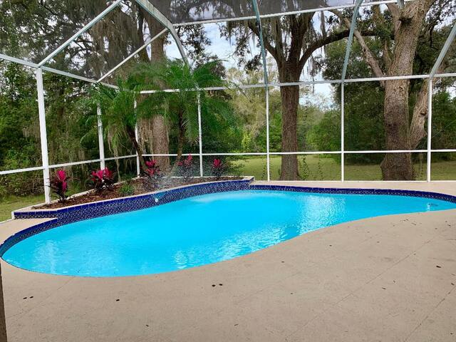Riverhills Pool Retreat in the heart of Tampa!