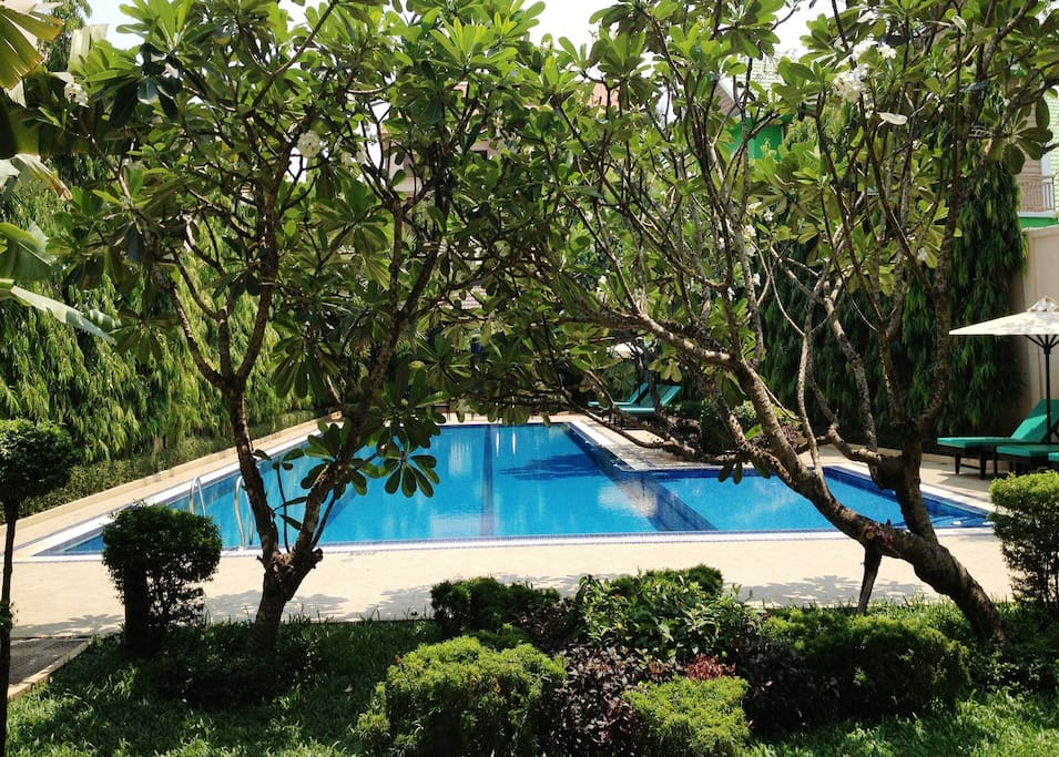 Poolside with garden view