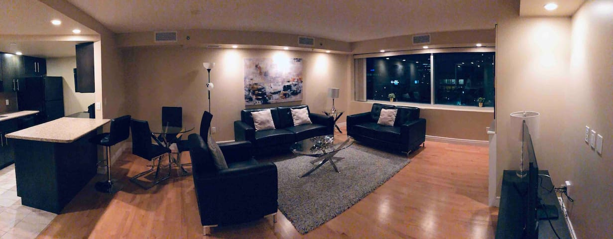 Luxury, clean and cozy downtown condo