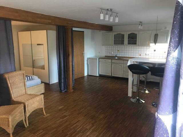 Gemütlich große 1 Zimmer Wohnung