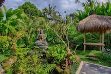 Lush Beautiful Garden