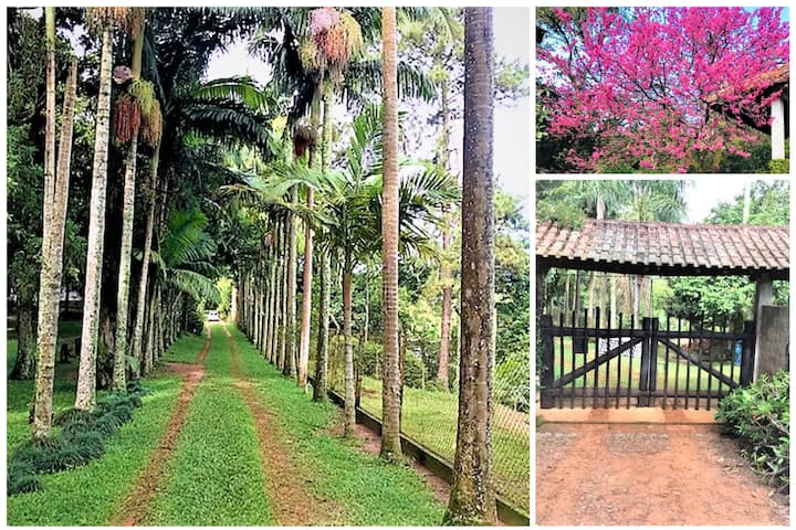 Sitio Dos Carvalhos Tranquilidade e Romantismo
