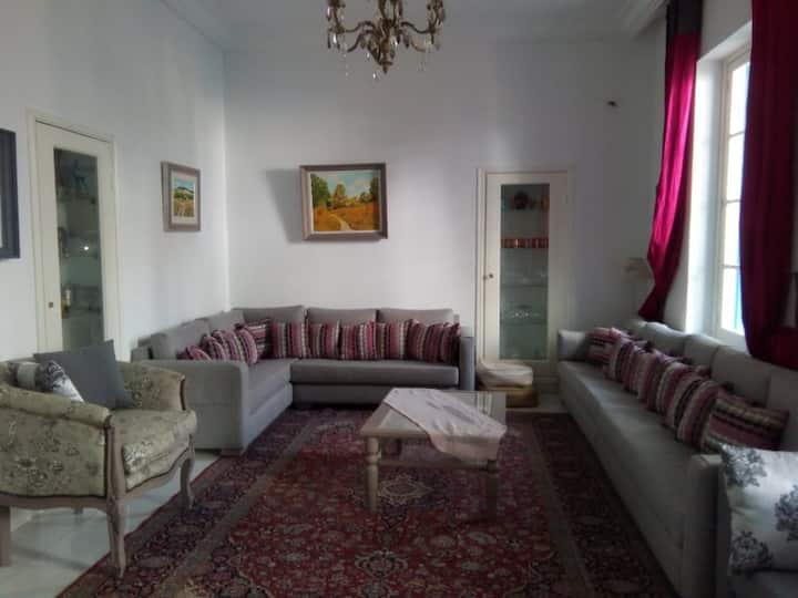 Un appartement spatiaux avec terrasse à Tunis
