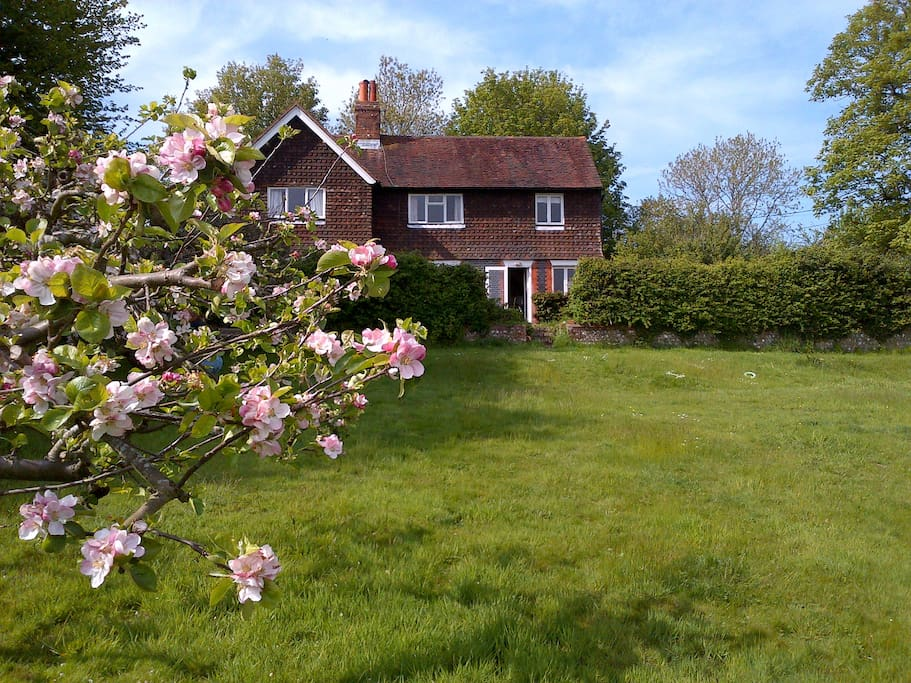 Cottage from lower garden in Spring.